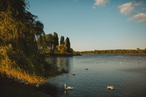 Willen Lake by Eneka Stewart Photography